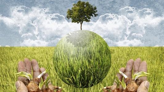 Raspisan Javni poziv za dodjelu potpora male vrijednosti u poljoprivredi
