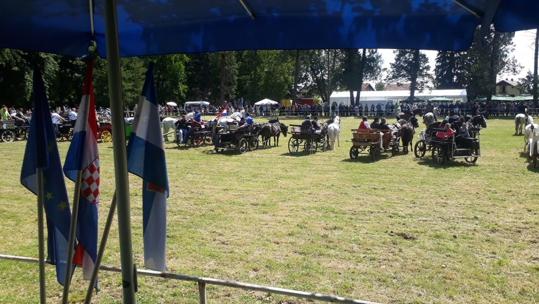 U Zelendvoru u nedjelju atraktivne Konjičke igre