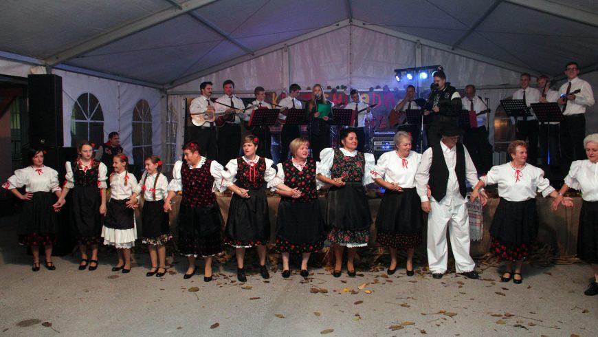 Kulturno umjetničko društvo Općine Petrijanec