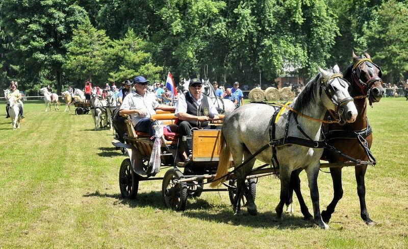 Atraktivne konjičke igre u Zelendvoru okupile veliki broj konjara iz Hrvatske i inozemstva